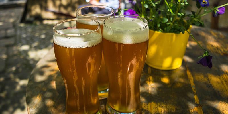 ljepota zdravlje i pivo