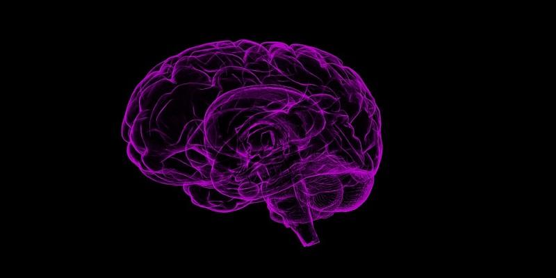 Upoznajte svoj um