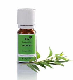 eukaliptus etericno