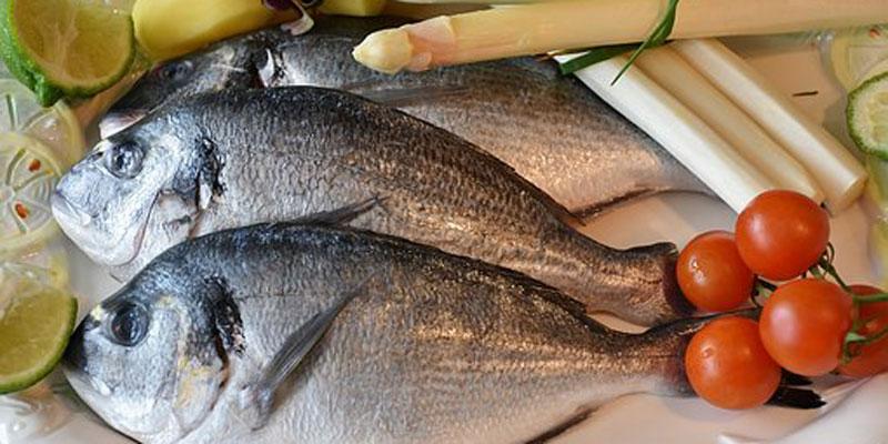 prehrana ribom